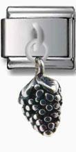 Grape Vine Silver Charm