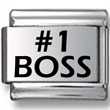 #1 Boss Laser Charm