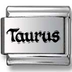 Taurus Laser Text Charm