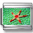 Red Starfish Photo Charm