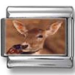 Baby Deer Photo Italian Charm