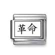"Kanji Symbol ""Revolution"""