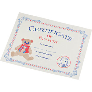 CERTIFICATE Of Bravery. Price: $0.33