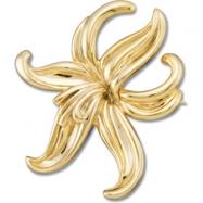 14K Yellow Gold Metal Fashion Brooch