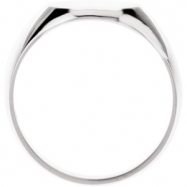 14K White Gold Gents Solid Oval Signet Ring With Brush Finished Top
