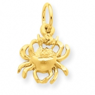 14k Cancer Zodiac Charm