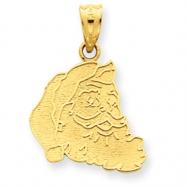 14k Satin & Polished Santa Charm