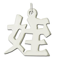 "Sterling Silver ""Niece"" Kanji Chinese Symbol Charm"
