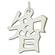 "Sterling Silver ""Wisdom"" Kanji Chinese Symbol Charm"