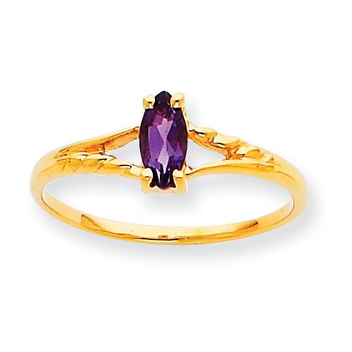 10k Polished Geniune Amethyst Birthstone Ring. Price: $79.24