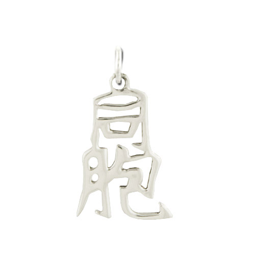 "Sterling Silver ""Brother"" Kanji Chinese Symbol Charm. Price: $39.95"