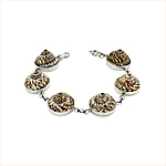 Sterling Silver and Sundial Shell Round Links Bracelet