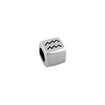 Sterling Silver Aquarius-The Water Bearer Square Bead