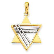 14K  Two-Tone Gold Star of David Pendant