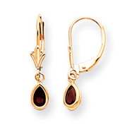 14K Gold Garnet Earrings - January