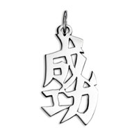 "Sterling Silver ""Success"" Kanji Chinese Symbol Charm"