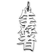 "Sterling Silver ""Survivor"" Kanji Chinese Symbol Charm"