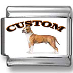 American Staffordshire Terrier Dog Custom Photo Charm