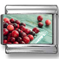 Bright Cranberries Photo Charm