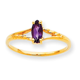 14K Gold February Amethyst Birthstone Ring. Price: $106.66