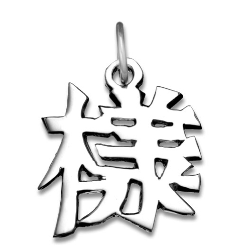 "Sterling Silver ""Appearance"" Kanji Chinese Symbol Charm. Price: $39.95"