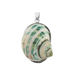 Sterling Silver Large Oval Pendant with Green-White Turbo Shell
