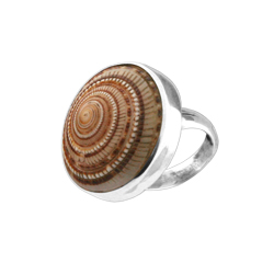 Sterling Silver Ring with Round Sundial Shell Inlay